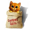 Отдается в дар Котик в мешке(магнитный кот)