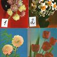 Отдается в дар Открытки формата 9х14 с цветами
