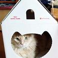 Отдается в дар Домик для кошек