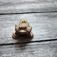 Отдается в дар Денежная жаба