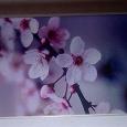 Отдается в дар Чехол для iPhone 4 новый