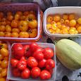 Отдается в дар Дачный дар «Овощи»