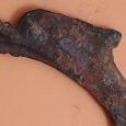 Отдается в дар Монета-дельфин, Ольвия,5 в.до н.э.