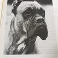 Отдается в дар Книга может кому в коллекцию!«Моя собака боксер.»