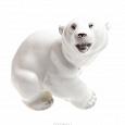 Отдается в дар Белый медведь