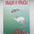 Отдается в дар Книга Мыши и крысы