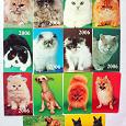 Отдается в дар Карманные календарики «Кошки» и «Собаки».