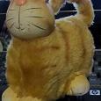 Отдается в дар Кот в День кота