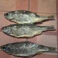 Отдается в дар сушеная рыба:-) :-) :-)