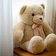 Отдается в дар Медведь Aurora