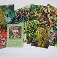 Отдается в дар набор открыток Бегонии