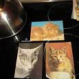 Отдается в дар открытки с кошками ОБЕЩАНЫ