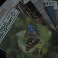 Отдается в дар детский журнал о природе