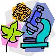 Отдается в дар Подготовка к Егэ, Гиа по биологии и просто для интересующихся данной наукой школьников
