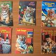 Отдается в дар Календарики с тиграми 2010 год