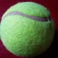 Отдается в дар мячик теннисный новый