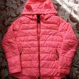 Отдается в дар Курточка демисезонная, размер 42-44