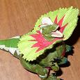 Отдается в дар Игрушка динозавр Трансформер