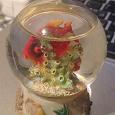 Отдается в дар Рыбка в стеклянном шаре