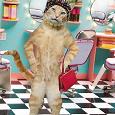 Отдается в дар Маленький косметический кот в мешке