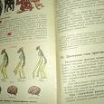 Отдается в дар Учебник Общая биология 9-10 класс( 1996 г)