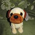 Отдается в дар Собака-лучший друг для ребёнка!)