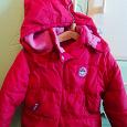 Отдается в дар Курточка на девочку на 3-4 года
