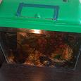 Отдается в дар аквариум ну 30 литров