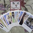 Отдается в дар Наборы открыток с животными