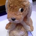 Отдается в дар Мягкие игрушки -собаки