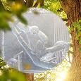 Отдается в дар МОНЕТА 1 СОЛЬ 2019 «КРАСНАЯ КНИГА. ЖЕЛТОХВОСТАЯ ОБЕЗЬЯНА» ПЕРУ