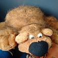 Отдается в дар Мягкая игрушка, медведь
