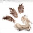 Отдается в дар Мех и перья