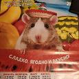 Отдается в дар Настенный календарь 2020 с крысой