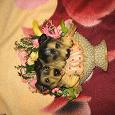 Отдается в дар декоративные керамические собачки на стену