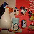 Отдается в дар Пингвины