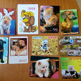 Отдается в дар карманные календарики кошки собаки