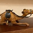 Отдается в дар Верблюд из Египта