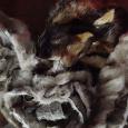 Отдается в дар Кусочки натур меха норки