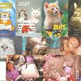 Отдается в дар Карманные календарики c котятами