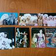 Отдается в дар карманные календарики кошки собаки цирк