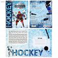 Отдается в дар Хоккей