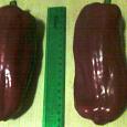 Отдается в дар семена крупного болгарского перца