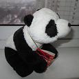 Отдается в дар панда