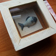 Отдается в дар Рыба под стеклом в рамке