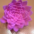 Отдается в дар Декоративный цветок