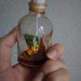 Отдается в дар Сандаловое масло
