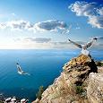 Отдается в дар Крымское желание