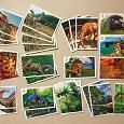 Отдается в дар Наклейки «Динозавры»