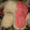 Отдается в дар шапка для девочки зимняя